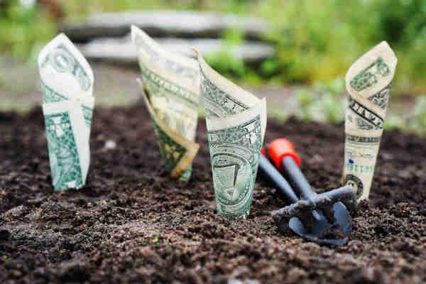 Manifest Money Overnight 2