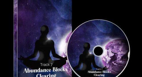 Track 7 Abundance Blocks Clearing